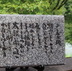 坂村真民「タンポポ魂」