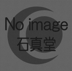 大島石 アクセサリの石真堂 ノーイメージ